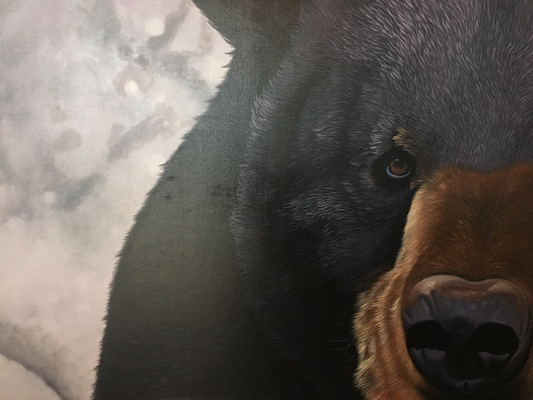 Slider art fall 2016 bear
